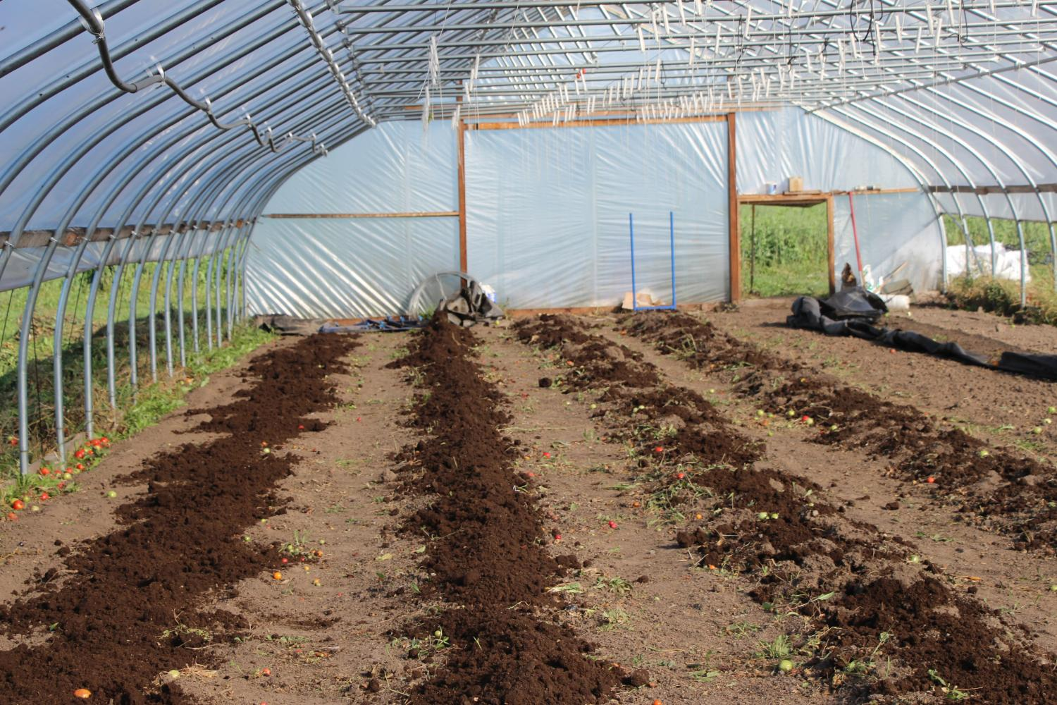 Farming in the Chippewa Valley: The Rise of CSA's